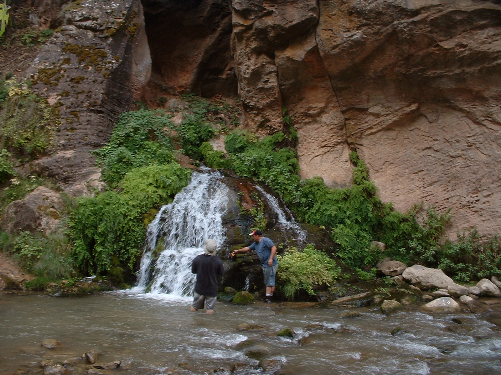 Zion's Narrows waterfall
